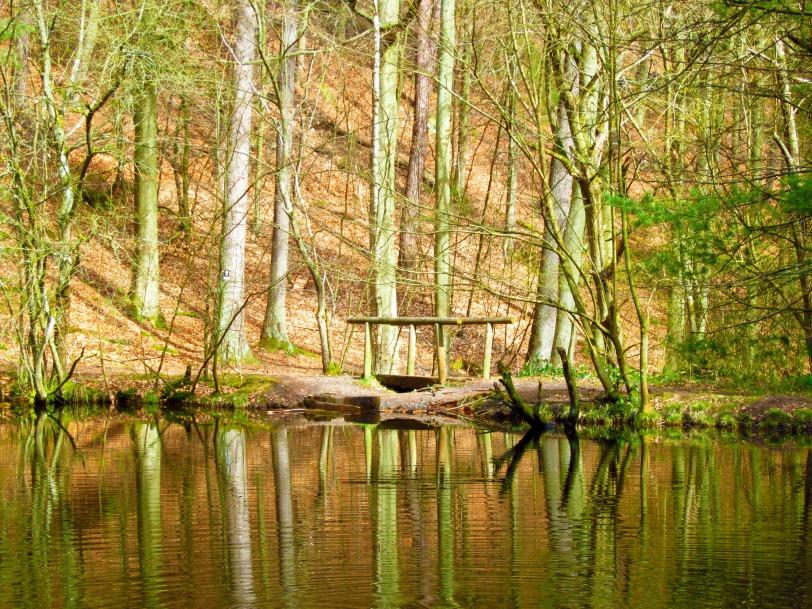 Bridge to the pond